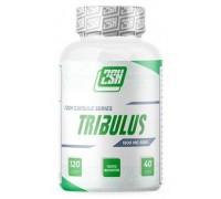 2SN TRIBULUS 90% 1000 мг 60 капс