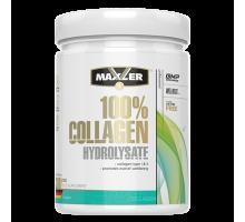 Maxler 100% Сollagen Hydrolysate 300 г