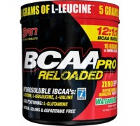 SAN BCAA-Pro Reloaded 456 гр